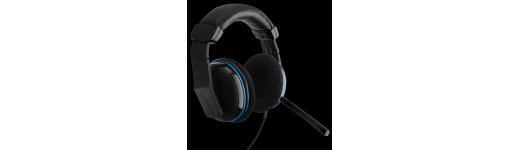 Headset/Speakers